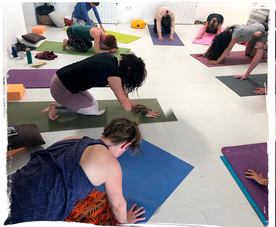 Ibiza Yoga Retreats